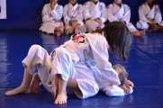 <h5>Caique Jiu Jitsu Academy - Gracie Brazilian Jiu Jitsu Martial arts </h5><p>Caique Jiu Jitsu Academy Gracie Brazilian Jiu Jitsu Martial Arts  In house tournament for kids</p>