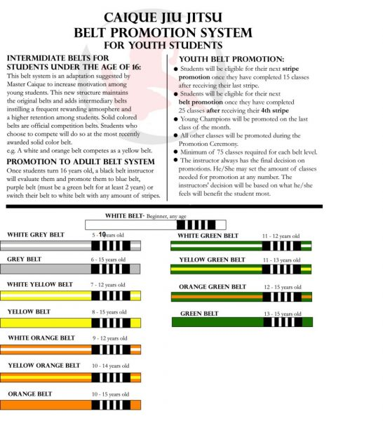 Youth Program Belt System