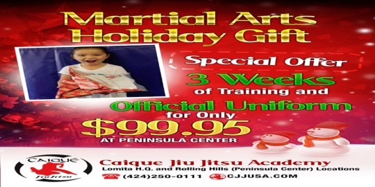 "alt=""martial arts holidays special"""